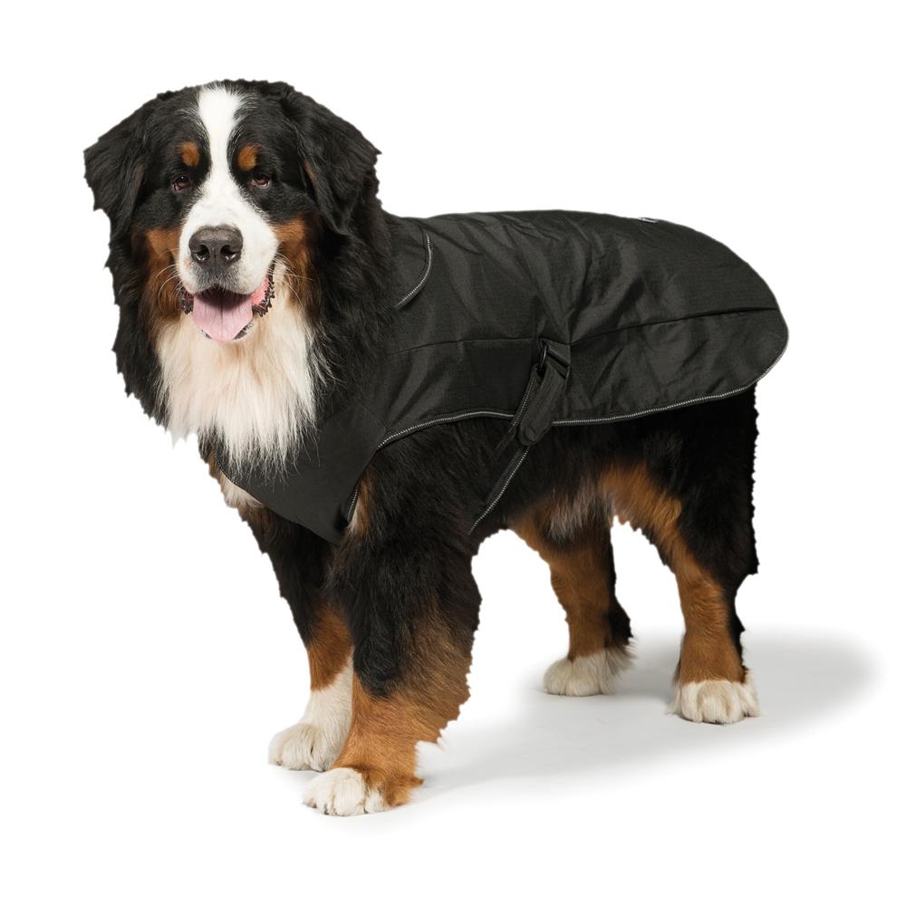 2 in 1 Waterproof Harness Coat Black