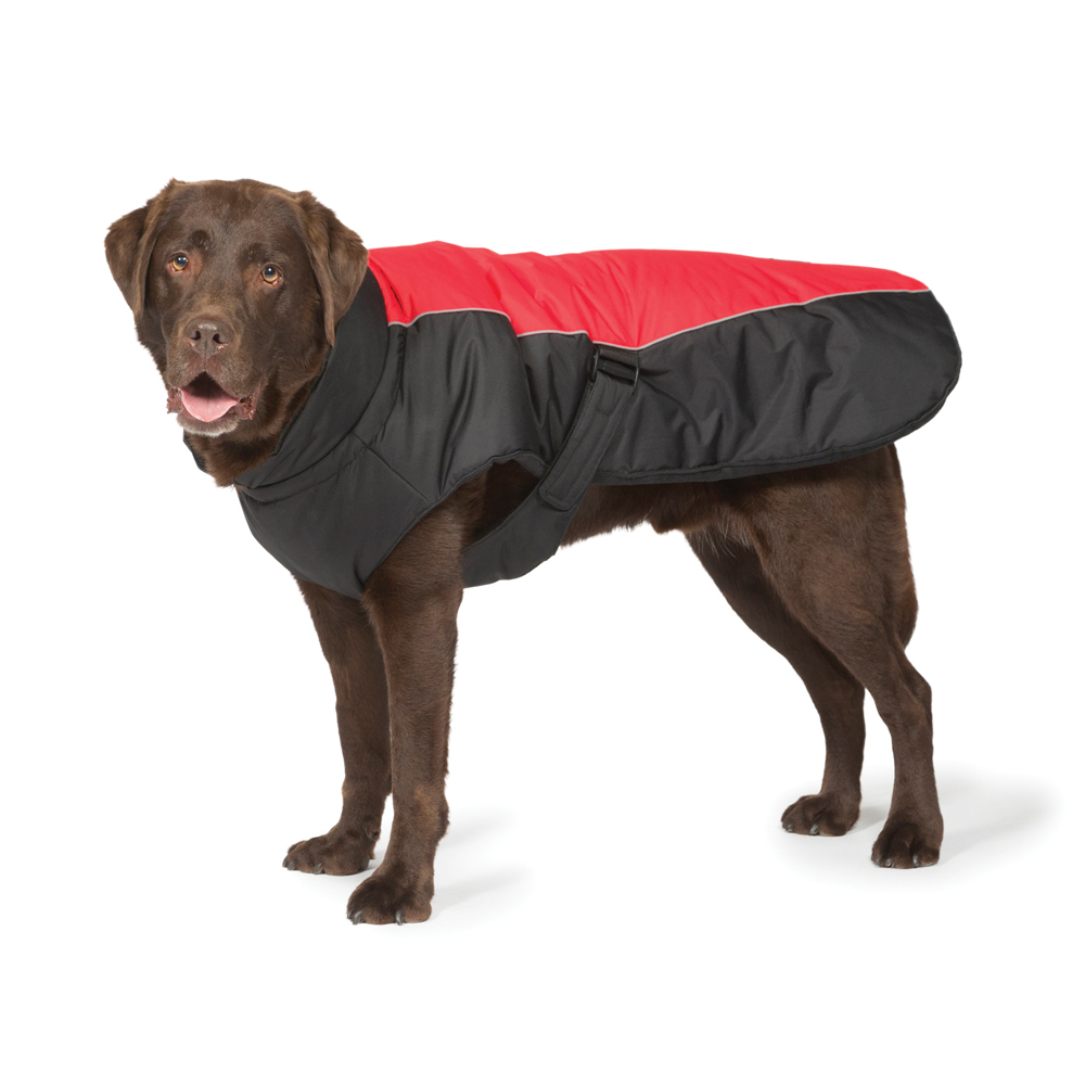 Black & Red Sports Luxe Waterproof Coat