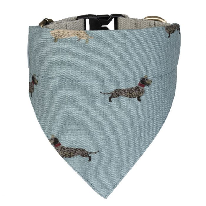 Dachshund Small Neckerchief Collar by Sophie Allport
