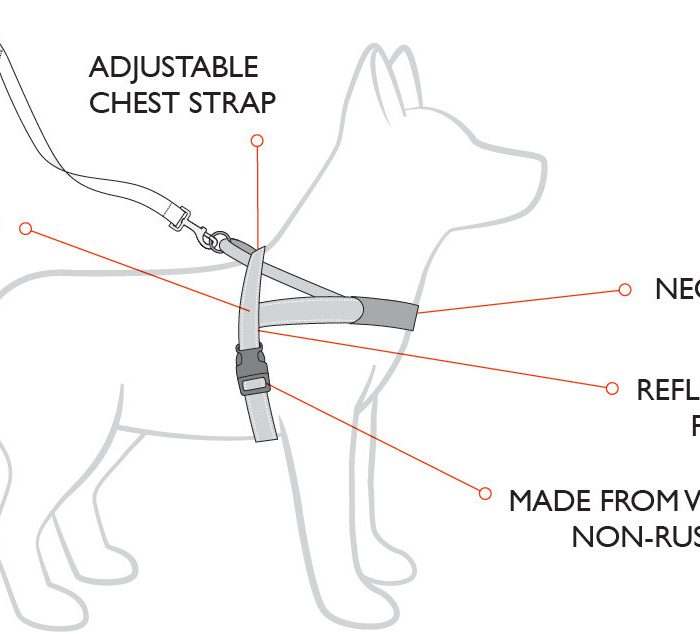 Ezy Dog Quick Fit Harness