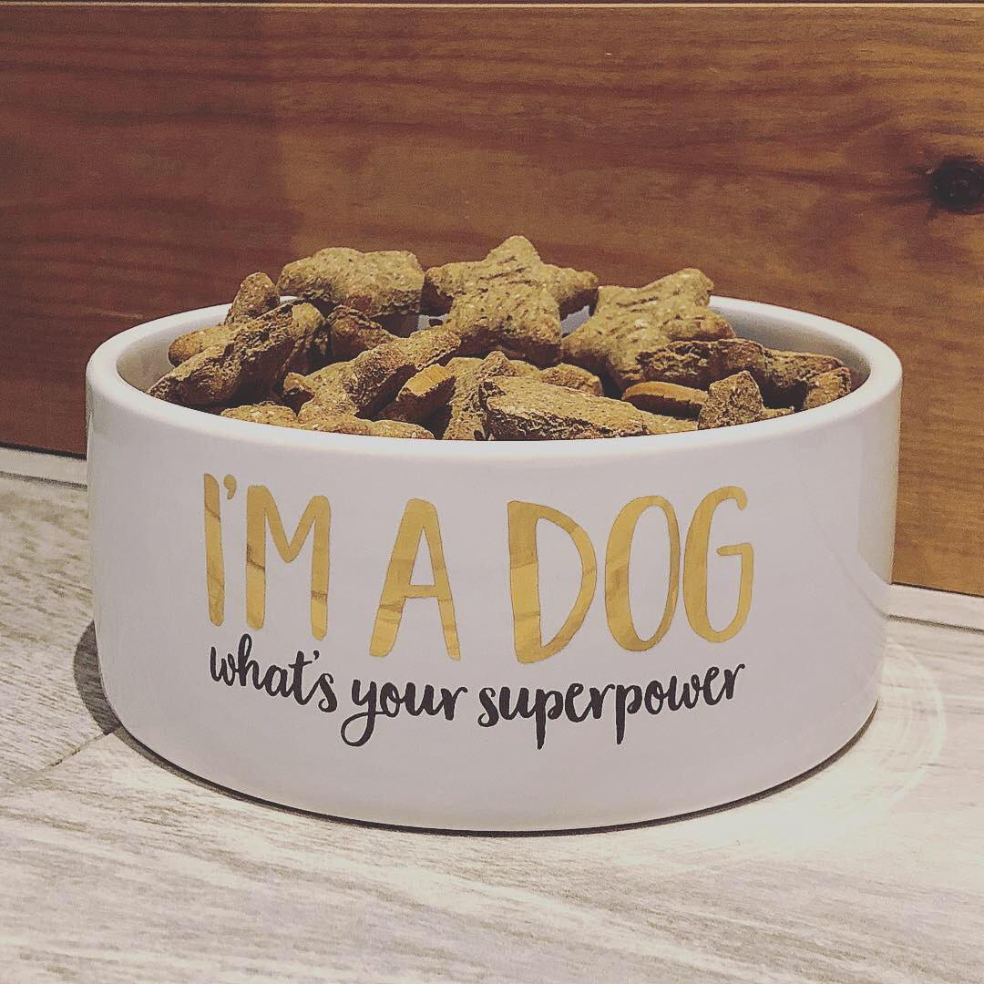 I'm a Dog, What's Your Superpower Bowl