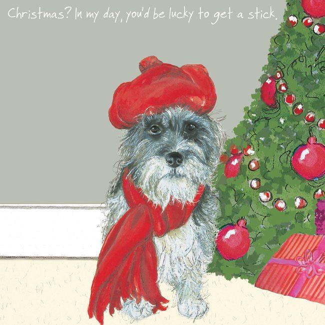 Rescue Dog Christmas Card